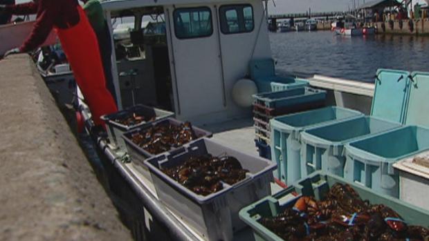 Lobster Unloading
